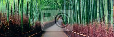 Naklejka Bamboo Grove