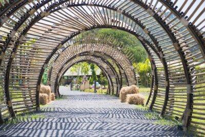 Naklejka Bamboo struktura tunel w ogrodzie