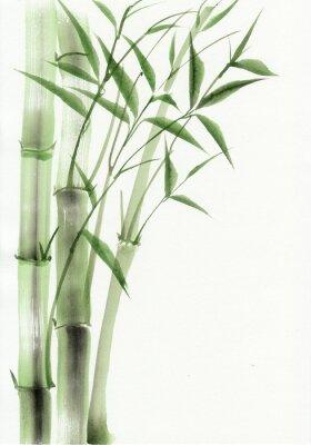 Naklejka Bambus Oryginalny akwarela. Azjatycki styl.