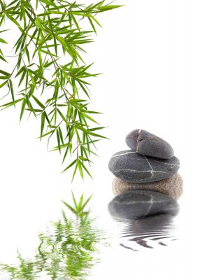 Naklejka bambusa i galets nakłada na siebie