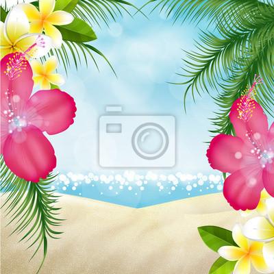 Naklejka Banner Spiaggia, Ibisco, klacz, nieruchomości