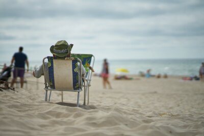 beach chairs and umbrellas on beach