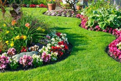Naklejka Beautiful home garden in full bloom