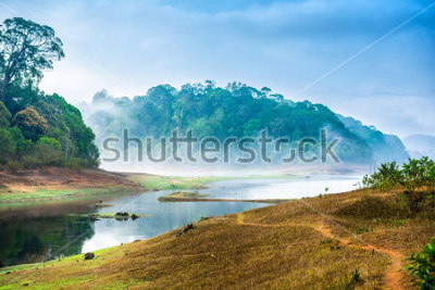 Naklejka beautiful landscape with wild forest and river with fog in India. Periyar National Park, Kerala, India