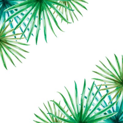 Naklejka Beautiful tropical leaves frame. Palm. Watercolor painting. Exotic plant. Natural print. Sketch drawing. Botanical composition. Greeting card. Painted background. Hand drawn illustration.