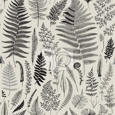 Bez szwu deseń. Paprocie. Vintage wektor botaniczne ilustracji. Czarny i biały
