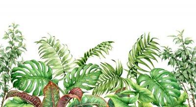 Naklejka Bezproblemowa granica roślin tropikalnych