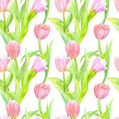 Naklejka Bezszwowych tekstur z eleganckimi tulipanów dla swojego projektu. Malarstwo akwarelowe