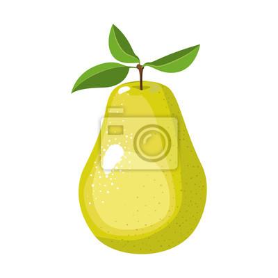 Naklejka Białe tło z realistyczne gruszka ilustracji wektorowych owoców