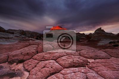 Naklejka Biały kieszonkowy, Arizona, USA