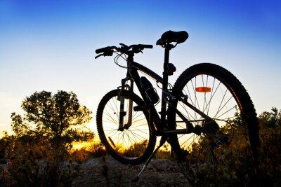 Naklejka bicicleta de montaña en el Paisaje