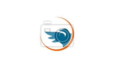 bird logo vector