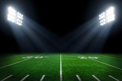 Naklejka Boisko do piłki nożnej oświetlone przez światła stadionowych