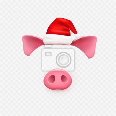 Boże Narodzenie Santa Claus kapelusz z uszy świni, elementy nosa na przezroczystym tle. Nowy rok czerwony kapelusz i twarz piggi. Wektor symbol roku 2019.