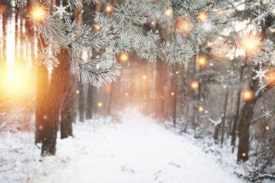 Boże Narodzenie tło. Zimowy las ze świecącymi płatkami śniegu. Bożenarodzeniowy las z śnieżną drogą. Sosnowe gałęzie z szronem. Boże Narodzenie i Nowy Rok w grudniu