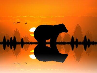 Naklejka brązowy w lesie o zachodzie słońca