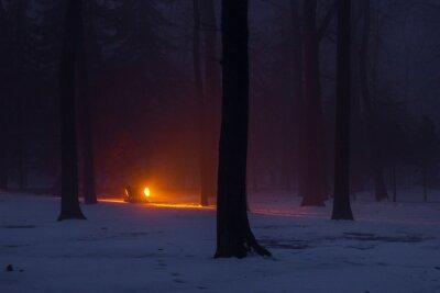 Bright spotlight in the night winter forest in Kharkiv, Ukraine