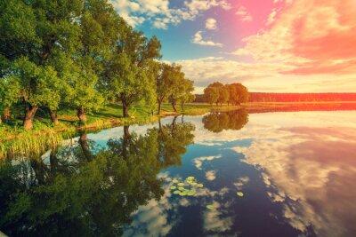 Naklejka brzegu rzeki z drzew o zachodzie słońca