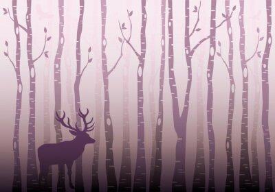 Naklejka Brzozowy las drzewo, wektor