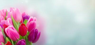 Naklejka bukiet kwiatów tulipanów różowe i fioletowe