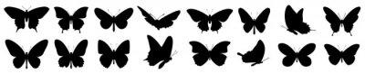 Naklejka Butterflies silhouette set. Vector illustration