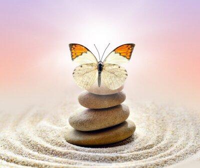 Naklejka Butterfly and stones balance