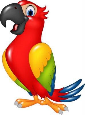 Naklejka Cartoon śmieszne papuga na białym tle