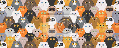 Naklejka Cat poster. Cartoon cat characters seamless pattern. Different cat`s poses and emotions set. Flat color simple style design
