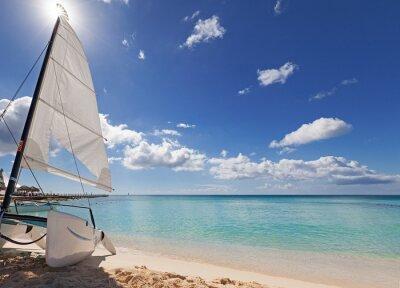 Naklejka Catamaran on the beach