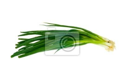 Naklejka cebula zielona