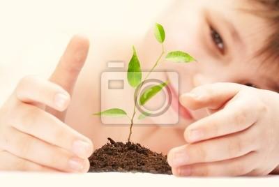 Chłopiec zauważa uprawy młodych roślin.