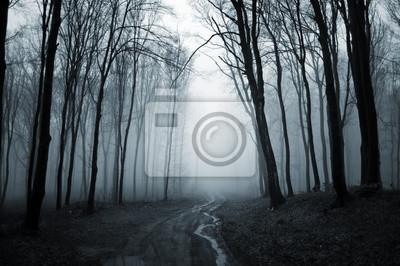 ciemny las z mgły tle