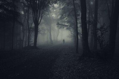 ciemny las z upiorny człowiek chodzenie na drodze