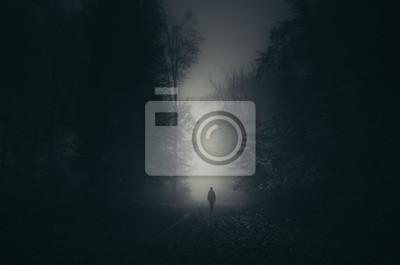 cień człowieka na ciemnym scary leśną ścieżkę, tajemniczy krajobraz