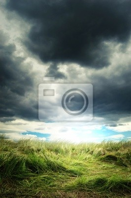 ciężkie chmury nad dziedzinie zielonej trawie