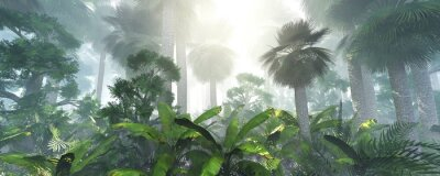 Naklejka coconut jungle in the morning in the fog, forest in the haze. 3d rendering.