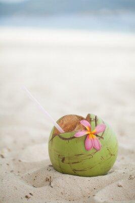 Naklejka Coconut na plaży