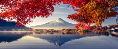 Naklejka Colorful Autumn Season and Mountain Fuji with morning fog and red leaves at lake Kawaguchiko is one of the best places in Japan