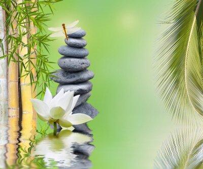 Naklejka composition bambou palmier galets zen aquatique