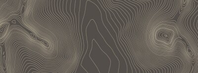 Naklejka Contours vector topography. Geographic mountain topography vector illustration. Topographic pattern texture. Elevation graphic contour height lines.