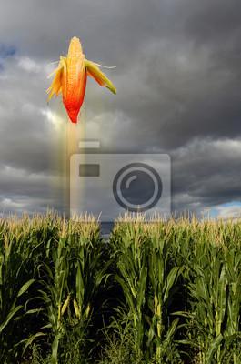 Corn latania jak pocisk.