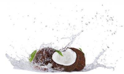 Naklejka Cracked coconuts in water splash on white