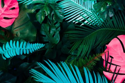 Naklejka Creative fluorescent color layout made of tropical leaves. Flat lay neon colors. Nature concept.