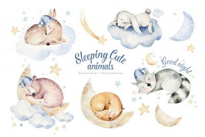 Naklejka Cute dreaming cartoon animal deer, bear hand drawn watercolor illustration. Sleeping rabbit charecher kids nursery wear fashion design, baby cartoon and fox