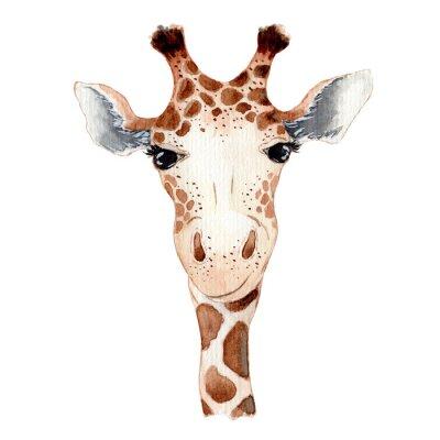 Naklejka Cute giraffe cartoon watercolor illustration animal