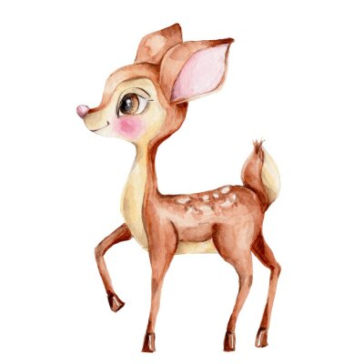 Naklejka Cute little deer; watercolor hand draw illustration; with white isolated background