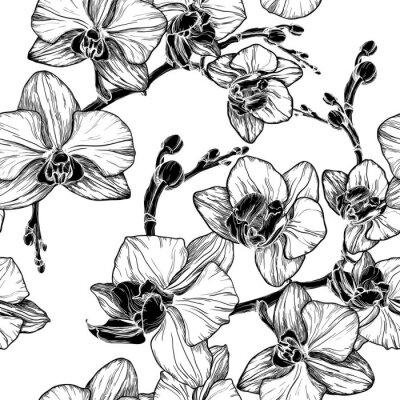 Naklejka czarno-biały bez szwu deseniu z kwiatów orchidei