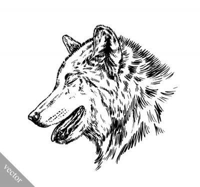 Naklejka czarno-biały wilk grawerować izolowane