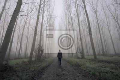 Naklejka Człowiek chodzenie na brudnej drodze między mgły i drzew