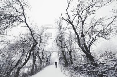 człowiek na ścieżce z drzew spooky w zimie